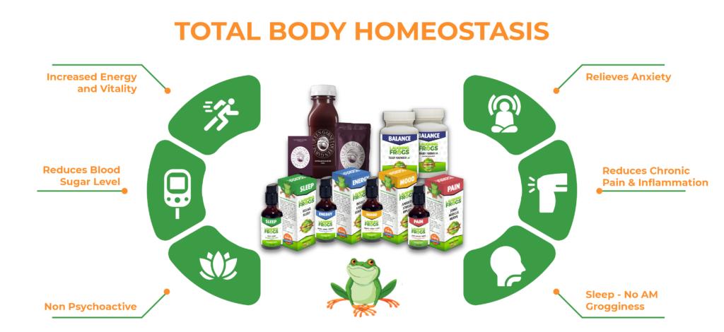 total body homeostasis2-02